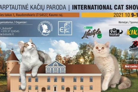 """Tarptautinė kačių paroda ,,RED CASTLE CAT"""""""