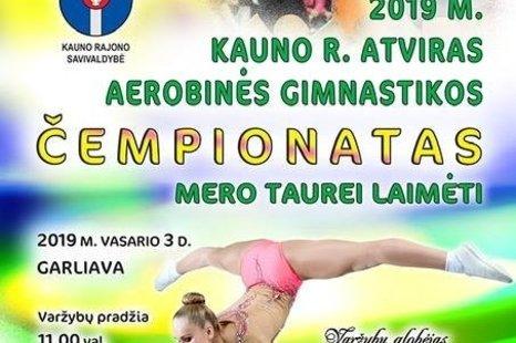 Kauno r. atviras aerobinės gimnastikos čempionatas